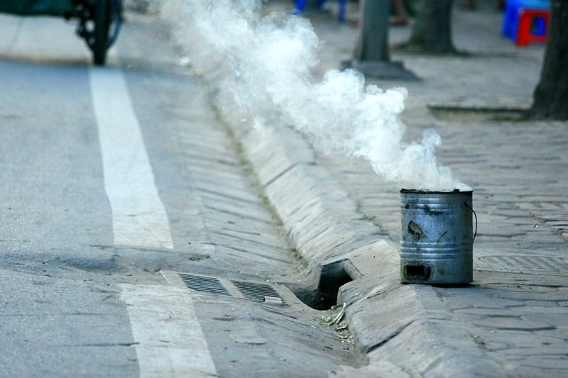 than tổ ong có hại cho môi trường